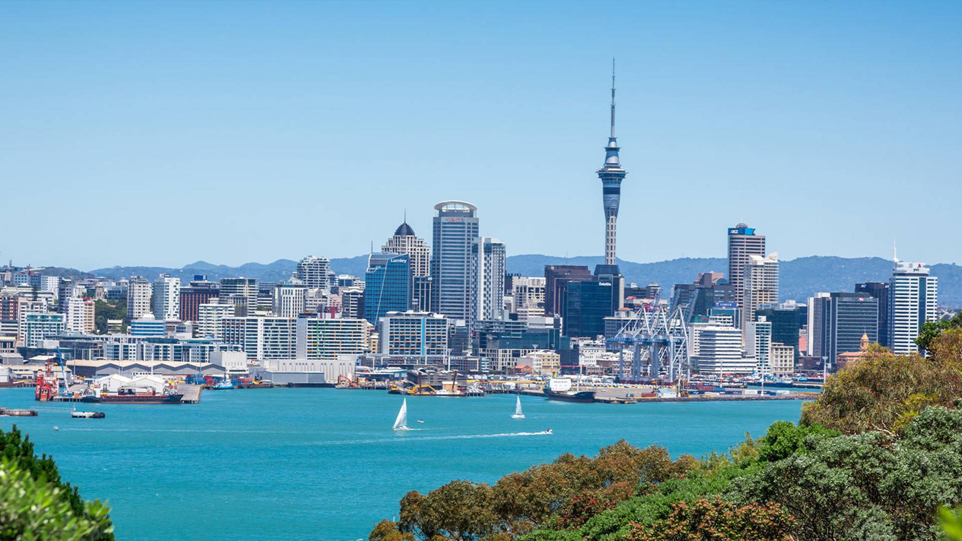 Auckland City Sights Tour with Museum & Cultural